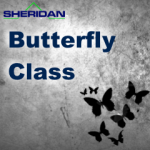 option help, option education, options education, Dan Sheridan, stock market, portfolio planning, financial portfolio, options class, option class, stock option class, stock options class, butterflies, butterlys, butterfly strategies, butterfly options, butterfly option, butterfly strategy